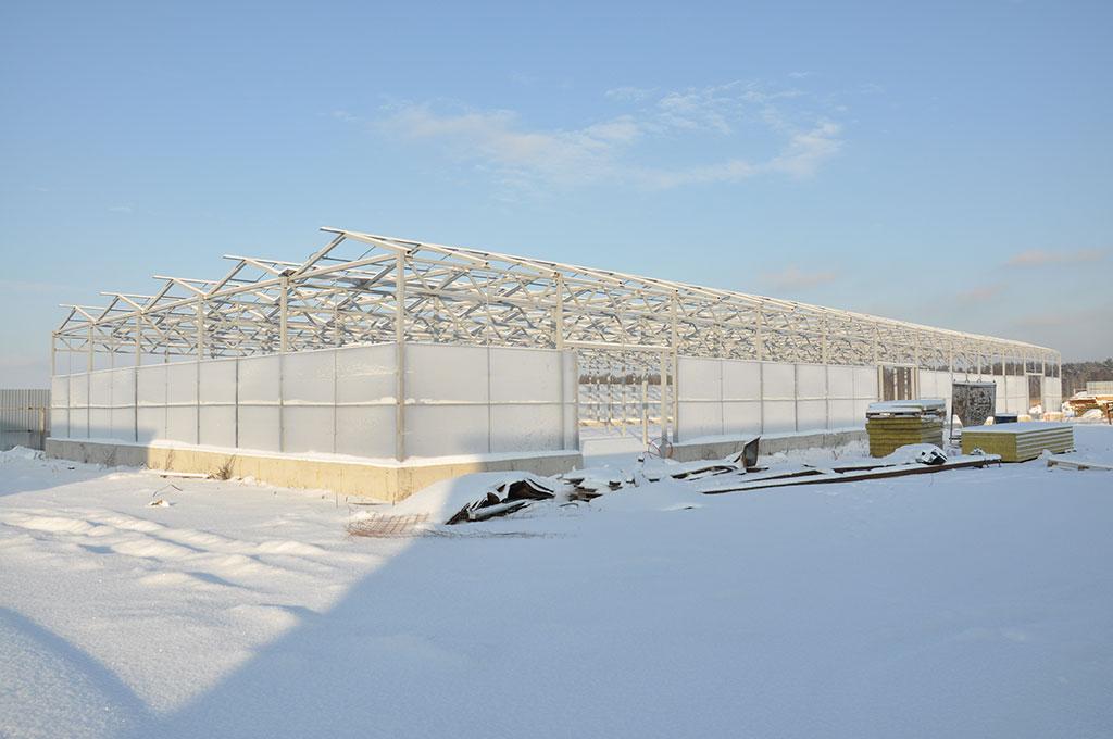 Строительство промышленных зимних теплиц фото
